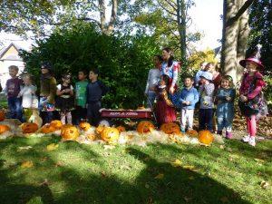 pumpkins on culverley